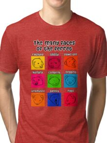 The Many Faces of the Ferret Tri-blend T-Shirt