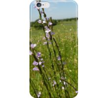 Country Breeze iPhone Case/Skin