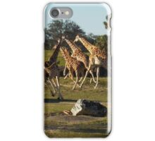 Giraffes Running iPhone Case/Skin