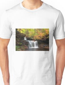 R. B. Ricketts in the Changing Forest  Unisex T-Shirt