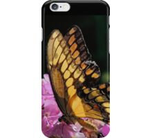 Monarch on Flowers iPhone Case/Skin