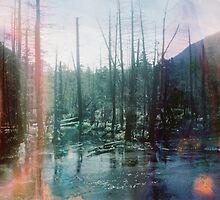 Acid Lake by Jenn Winterbine