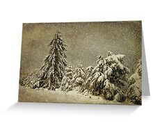 Winter's Wrath Greeting Card