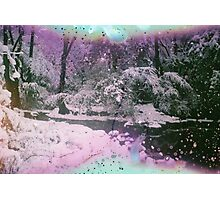 Snow Trilogy #2 Photographic Print