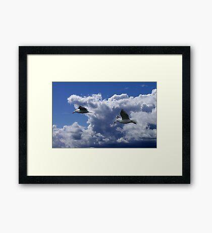 Wind Riders Framed Print