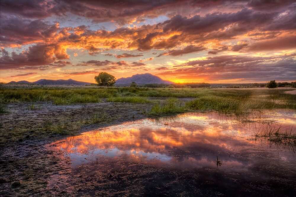 Another Sunset by Bob Larson
