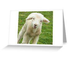Lambie Greeting Card