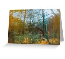Forest Entomology Greeting Card