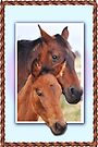 Mare and her Foal  by julie anne  grattan
