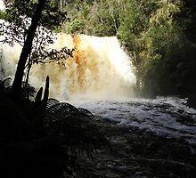 Dip Falls in Flood by Judi Rustage