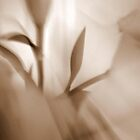 Whimsical Lilies Series. No 7 by Lozzar Flowers & Art