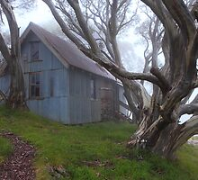 Cope hut Mt Bogong. by Donovan Wilson