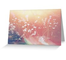Cherry Blossom Canvas Greeting Card