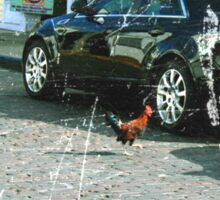 Why'd the chicken cross the road? Sticker