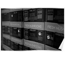 shrooms. queen vic market, melbourne Poster