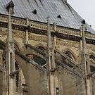the famous flying buttresses of Notre Dame de Paris, detail by BronReid