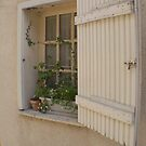 Chartres old town one of many pretty cottage windows by BronReid
