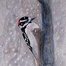 A Downy Woodpecker by AngieDavies