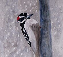 A Downy Woodpecker by AngieDavies
