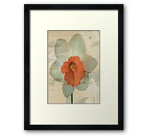 Narcissus ©  Framed Print