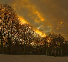 Sunsetting at Elvaston Castle Grounds by Elaine123