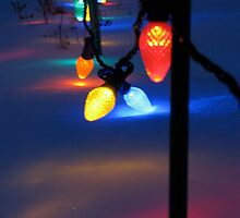 Team Colored Lights by Anna Gizzi