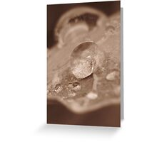 sepia water Greeting Card