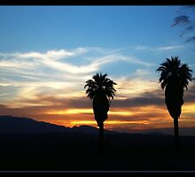 Good Morning California by Judylee
