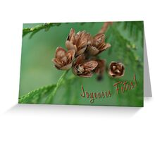 Traditions - French card Greeting Card