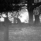 Spooky Cemetery by Andy Smith