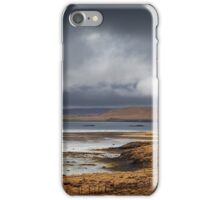 Follow the Fence iPhone Case/Skin