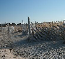 Fences at Narragansett Beach by cindyh