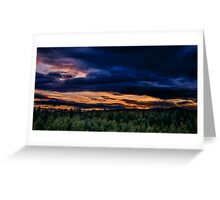 Norway forest Greeting Card