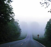 Foggy Morning on a Country Road by barnsis