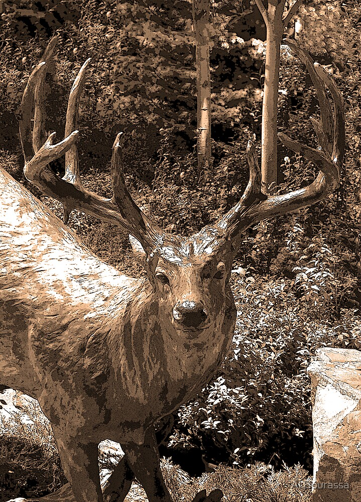 Big Buck by Al Bourassa
