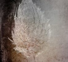 Experiment with textures by CezB