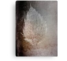 Experiment with textures Canvas Print