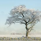 Winterscape by dotcomjohnny