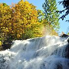 Chittenango Falls up close by Linda Long