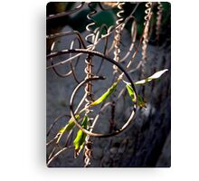 The Box Spring Fence Canvas Print