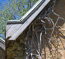 Roots under Eaves - Greendale Half Church by Helen Greenwood