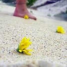 just leaving behind the flowers. by trinitywilson