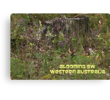 Blooming SW WA Canvas Print
