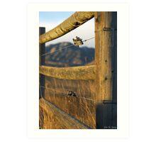 Good Fences  Art Print