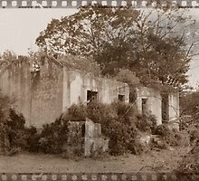 Vintage Ruins of Old Farm House by benetta-strydom