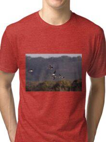 Stilt At Sunset Tri-blend T-Shirt