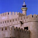 Ramparts of Nizwa by Joumana Medlej