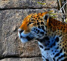 Jaguar meets Fractalius by Aaron Siebens
