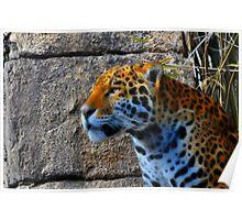 Jaguar meets Fractalius Poster