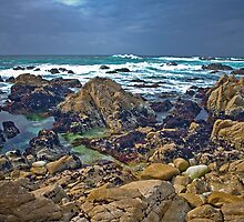 Monterey CA Central Coast by photosbyflood